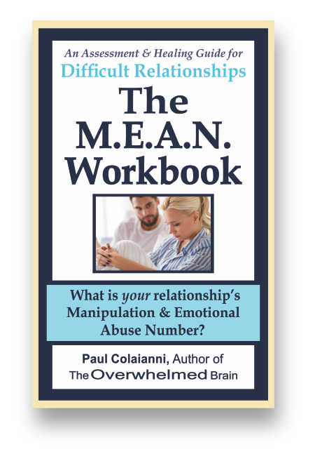 The M E A N  Workbook - Love and Abuse - Manipulation and